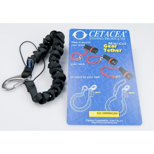 http://www.planbsafety.com/685-1370-thickbox/torch-lanyard-with-cord-loop.jpg