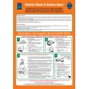 ISM Electric Shock & Serious Injury Poster Vinyl