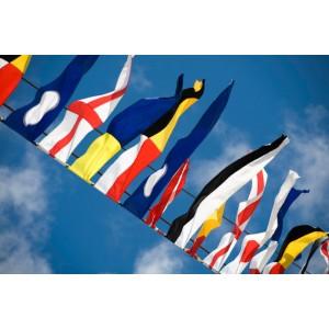 https://www.planbsafety.com/1086-2362-thickbox/international-code-flag-set-and-wallet.jpg