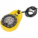 Riviera Orion Bearing Compass